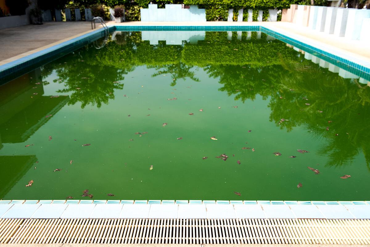 Traitement et entretien piscine morbihan